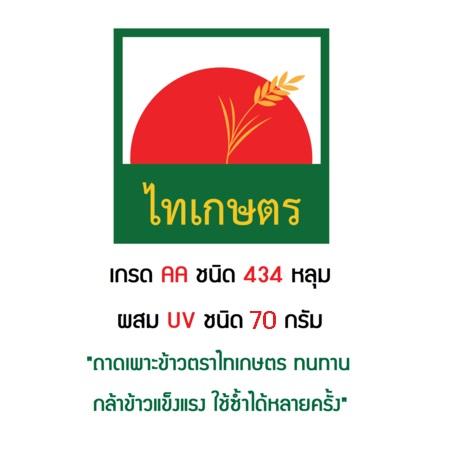 ถาดเพาะกล้านาโยน ถาดเพาะเมล็ดข้าว ถาดเพาะชำ 434 หลุม ตราไทเกษตร (แพค20ใบ)