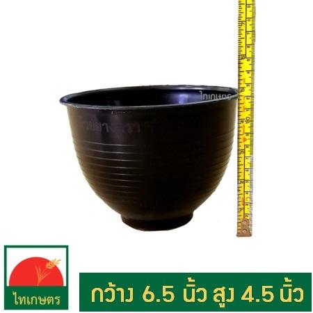 ถ้วยรองน้ำยาง ถ้วยรับน้ำยางพารา (แพค50ถ้วย)