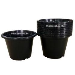 กระถางต้นไม้ กระถางดอกไม้ พลาสติก สีดำ 8 นิ้ว (แพค5ใบ)