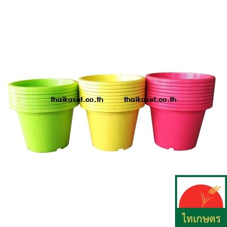 กระถางต้นไม้แฟนซี กระถางดอกไม้ กระถางพลาสติกสีหวาน ขนาด 8 นิ้ว Flowerpot (แพค5ใบ)