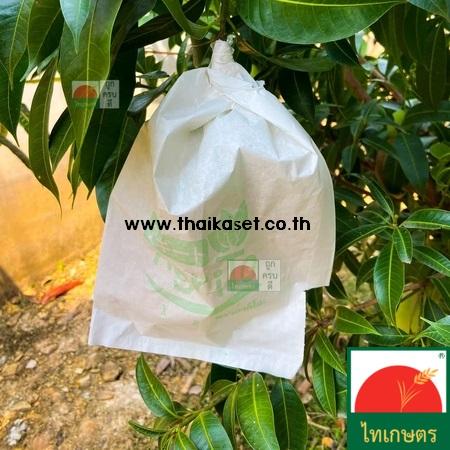 ถุงห่อผลไม้กันแมลง ถุงห่อมะม่วง ฝรั่ง ชมพู่ แพค 100 ใบ